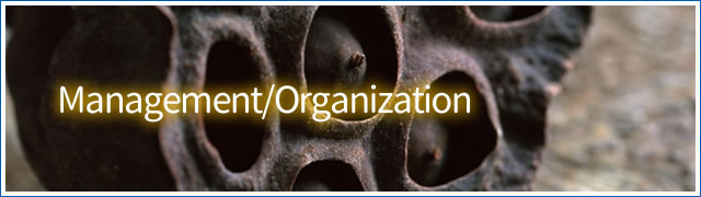 Management&Organization