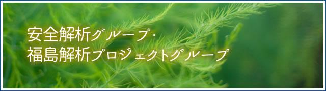 安全解析グループ・福島解析プロジェクトグループ