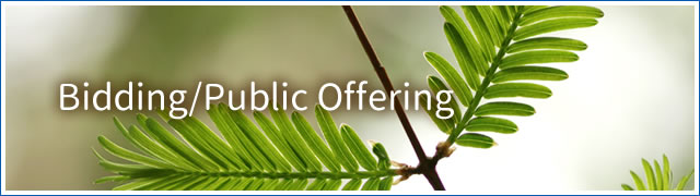 biddnig_public_offering