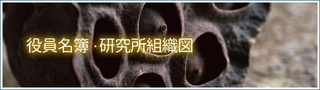 organization_title_r